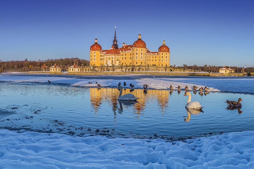 image Allemagne Moritzburg Chateau en hiver 07 as_247747044