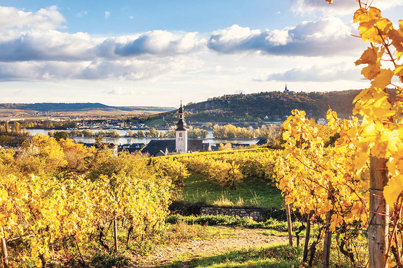 image Allemagne Rudesheim Panorama automne  it