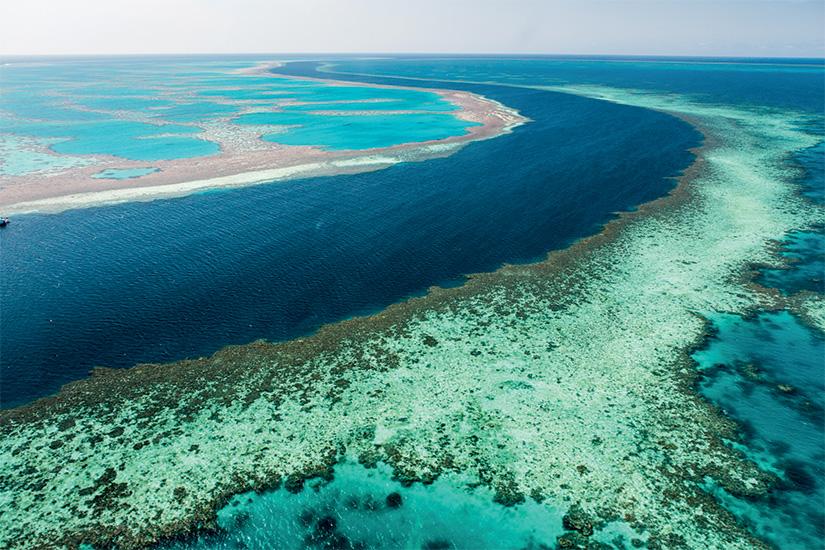 image Australie Queensland grande barriere de corail 30 it_461851027