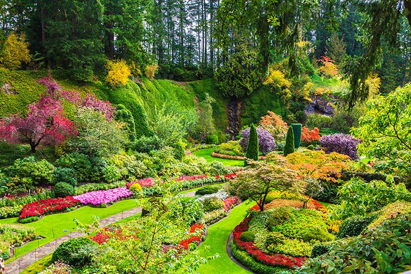 image Canada Victoria Sunken Garden  fo