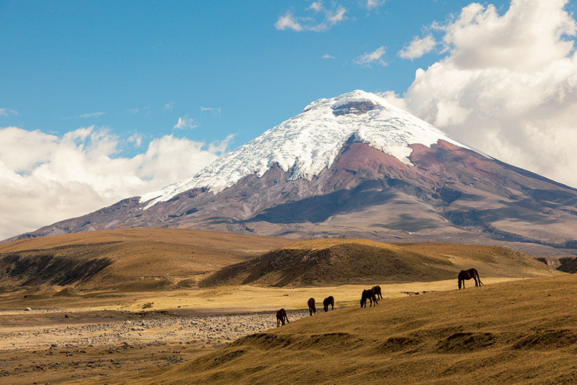 image Equateur cotopaxi  it
