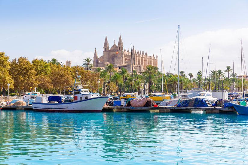 image Espagne Majorque Cathedrale de La seu  it