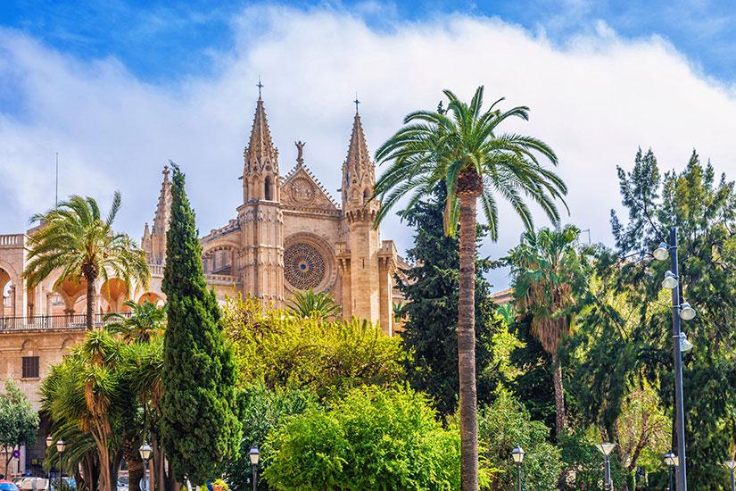 image Espagne Palma majorque Seu Cathedrale  it