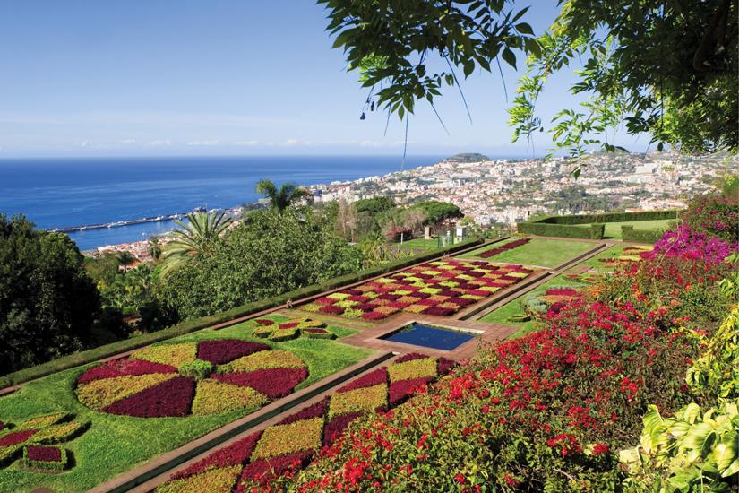 image Espagne madeira jardin botanique funchal 02 fo_71588136