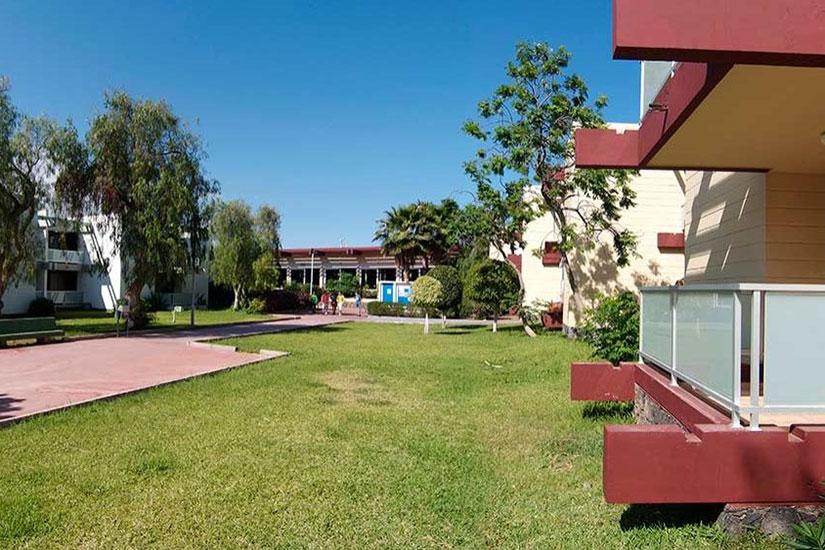 image Espagne tenerife hotel club palia don pedro las galletas jardin