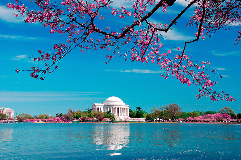 image Etats Unis Washington DC Thomas Jefferson monument  it
