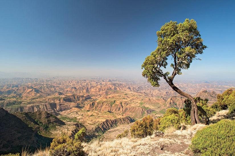 image Ethiopie Montagne du Simien  it
