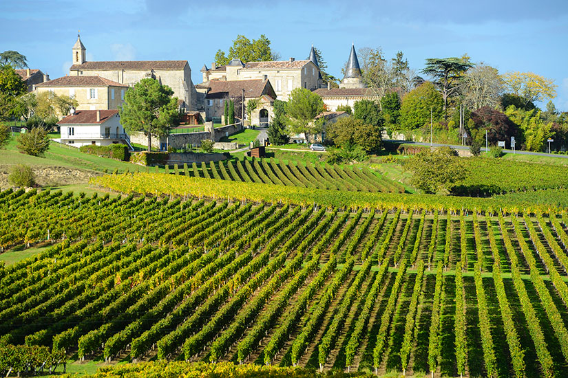 image France Bordeaux Saint Emilion Vignobles  it