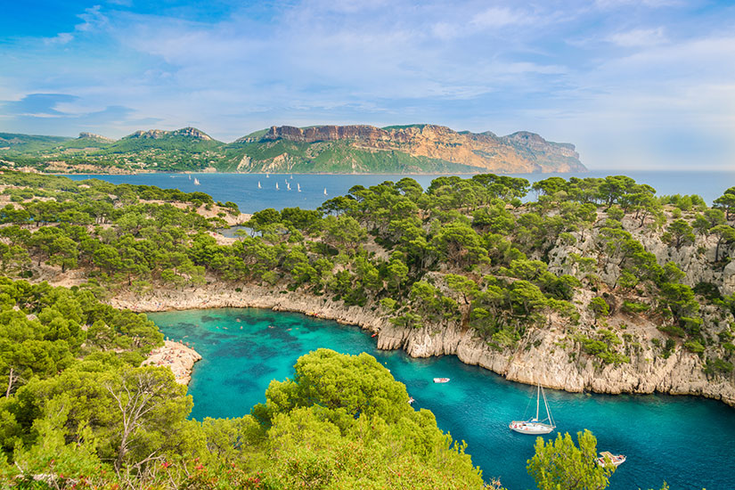 image France Marseille Calanque Port Pin  fo