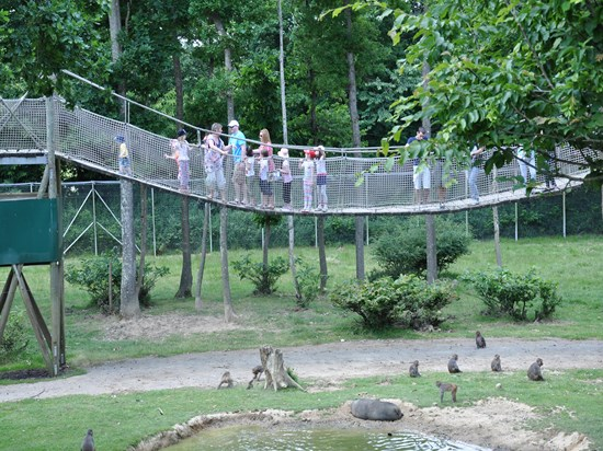 Jours chaigneau voyages for Parc sauvage 78