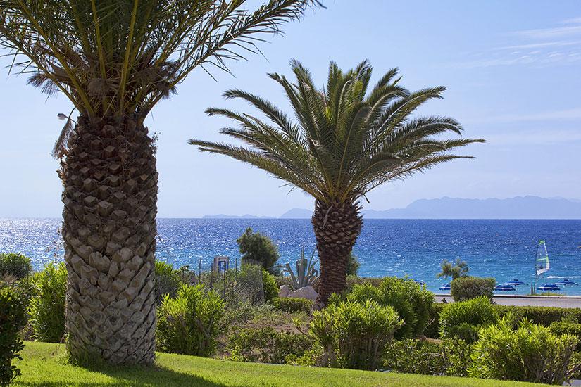 image Grece rhodes hotel smartline cosmopolitan jardin