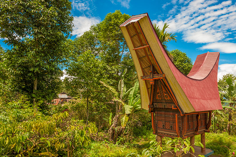image Indonesie Sulawesi Tana Toraja batiment traditionnels  fo