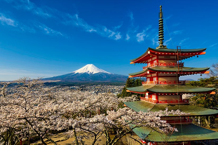 image Japon Mont Fuji pagode cerisiers  fo
