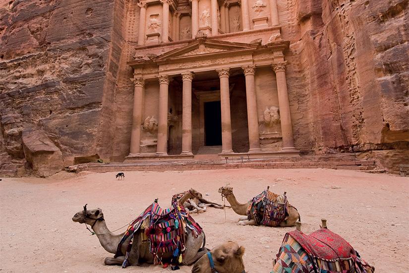 image Jordanie Petra chameaux 37 as_80450848