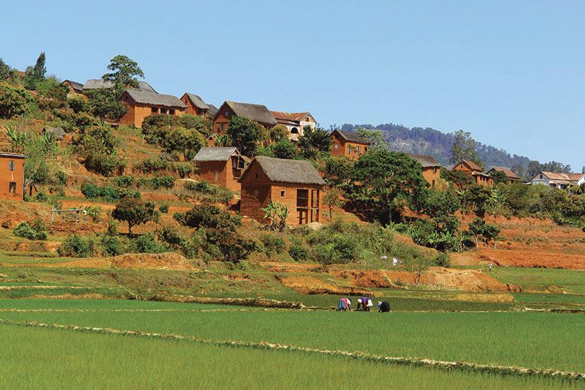 image Madagascar  fo