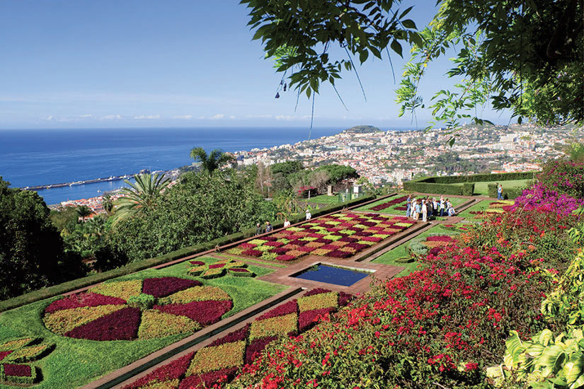 image Madere Funchal Jardin botanique  fo