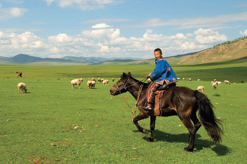 image Mongolie Cheval enfant  it