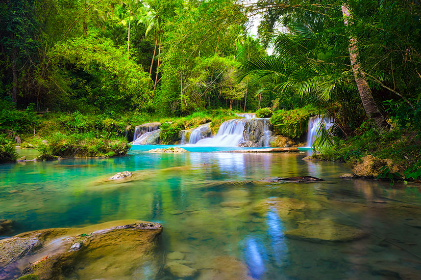 image Philippines Cascade Parc National foret profonde  it