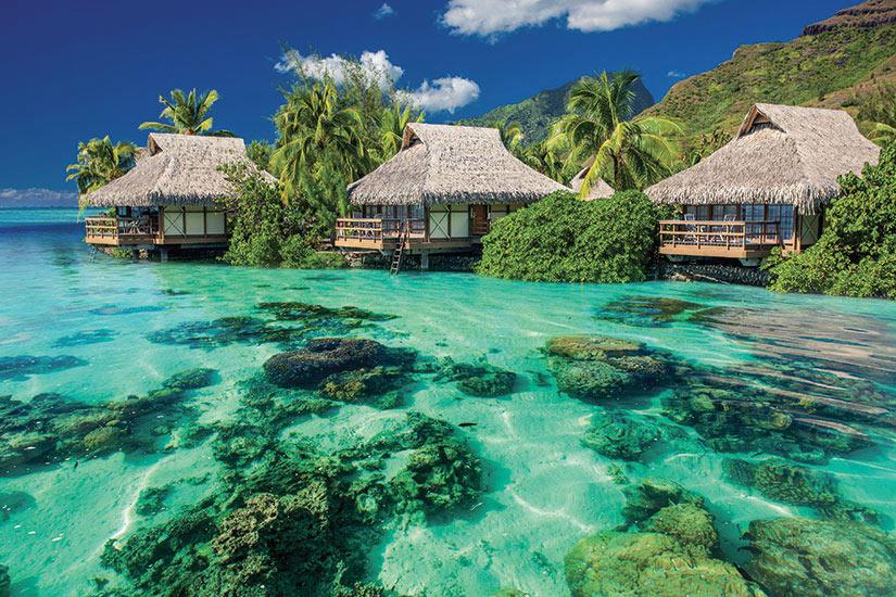 image Polynesie Francaise Moorea paysage au dessus et sous l eau complexe tropical  it
