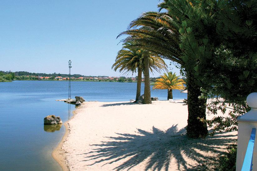 image Portugal Hotel Quinta Lagoa palmiers