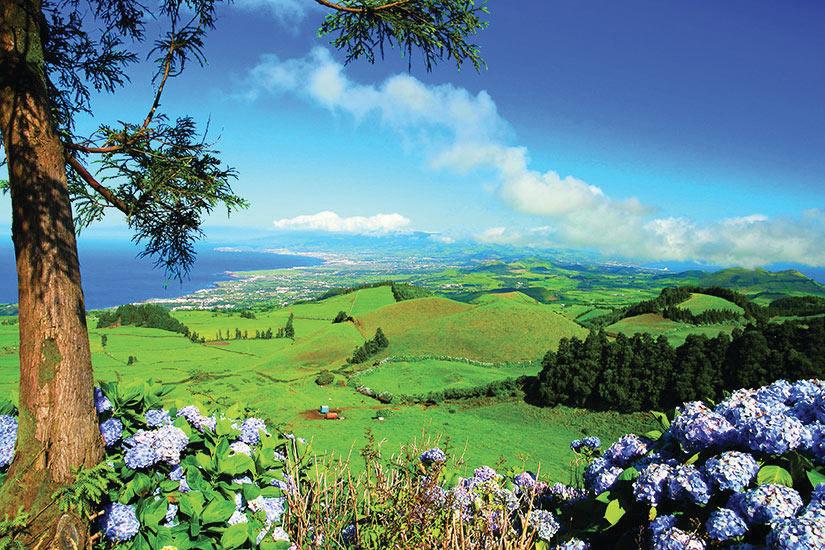 image Portugal Ile Sao Miguel Acores landscapen  it