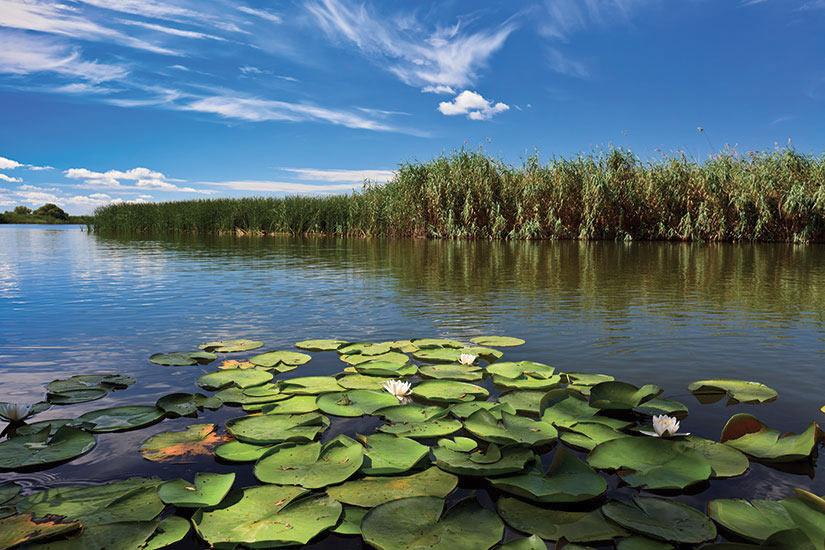 image Roumanie Danube Delta  fo