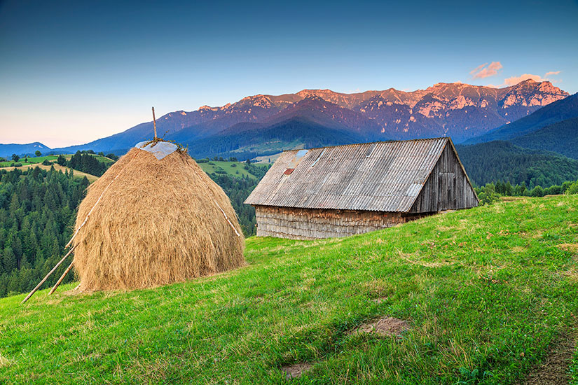 image Roumanie Transylvanie rural  it
