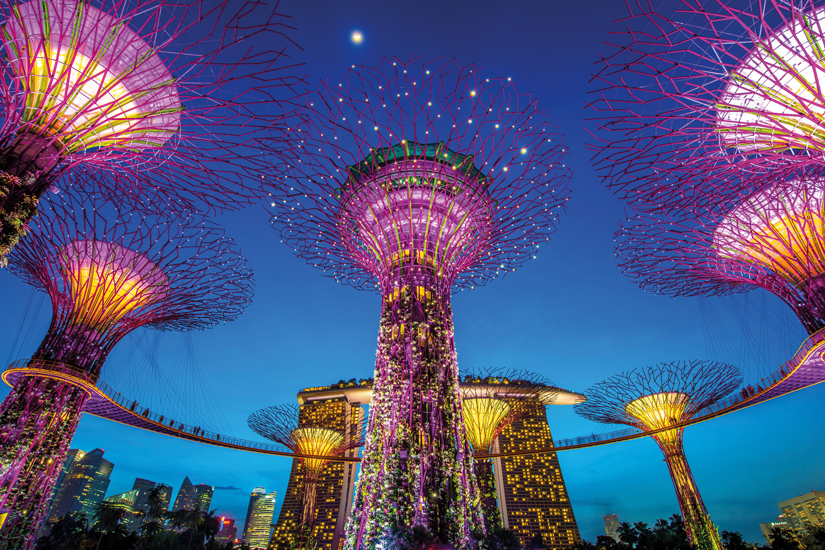 image Singapour supertree jardins baie 40 as_88305685