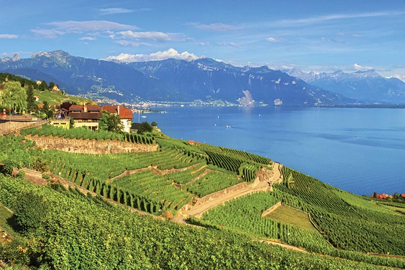 image Suisse lac leman lavaux Fo