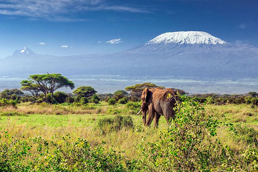 image Tanzanie mont Kilimandjaro  it