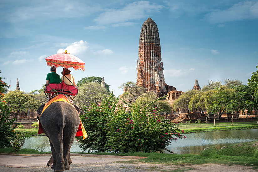 image Thailande Ayutaya Tour elephant  fo