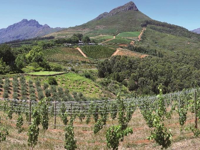 image Zimbabwe la route des vins