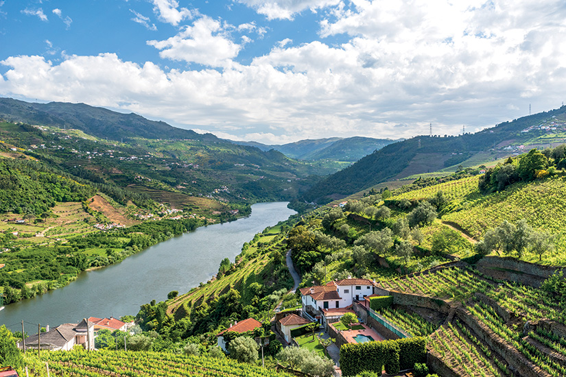 image portugal vallee du douro