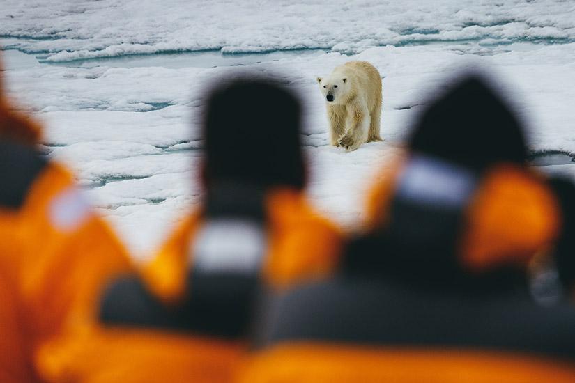 image russie croisiere joyaux de l arctique russe 5