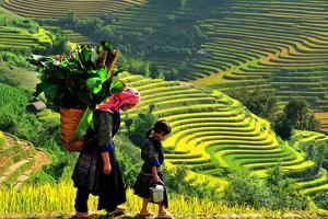 asie vietnam