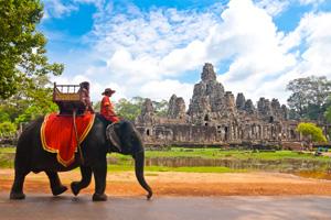 cambodge siem reap elephant  it