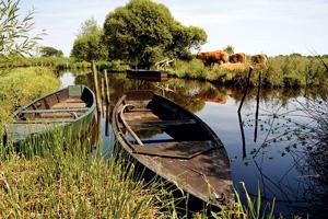 vignette France briere parc naturel