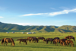 circuit kazakhstan steppes mongoles