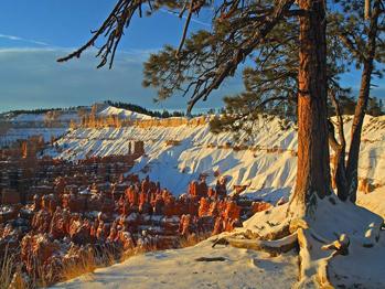 vignette SUA Bryce Canyon