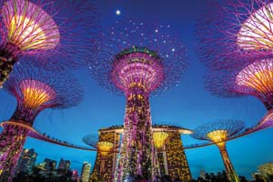 singapour supertree jardins baie 40 as_88305685
