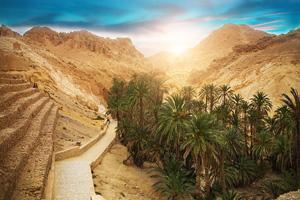 tunisie oasis chebika 01 as_83828313