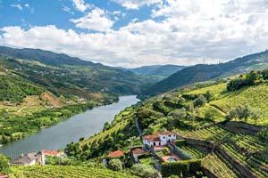 portugal vallee du douro