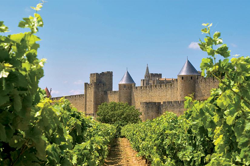 (image) image Cite medievale de Carcassonne et ses vignobles 66 it_146798870
