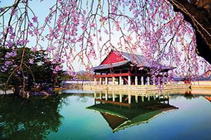 coree du sud seoul palais gyeongbokgung  it