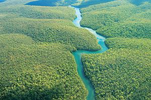 equateur amazonie riviere foret vue aerienne  it