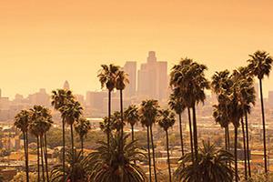 etats unis californie los angeles les palmiers  it