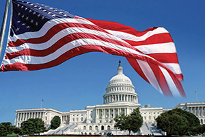 (vignette) Vignette Etats Unis Washington Capitol et drapeau  it