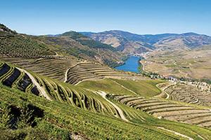 portugal pinhao vue de la riviere douro  fo