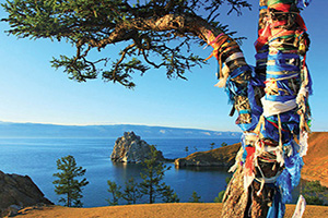 russie lac baikal guerisseur tree  it