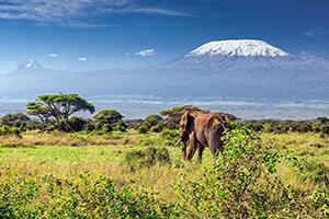 tanzanie mont kilimandjaro  it